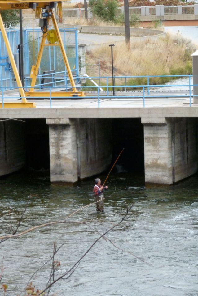 Okanagan Man Pays Homage to the Lost Salmon