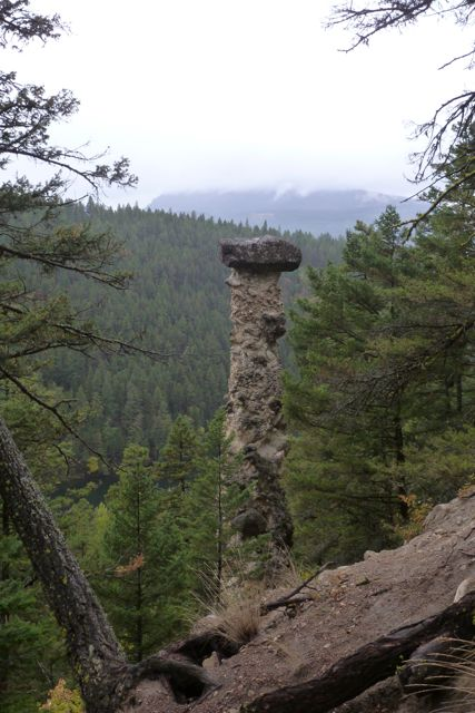 Tall eroded tower of clay and rock among the trees.