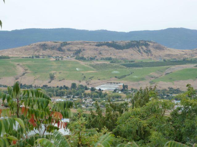 Vernon commonage view
