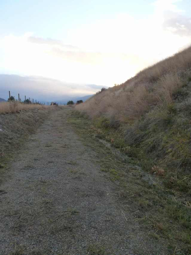 weedwhacked trail