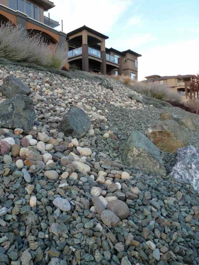 Landscaping with Rocks: a True Desert