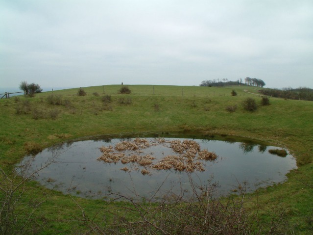 Chanctonbury_Dew_Pond