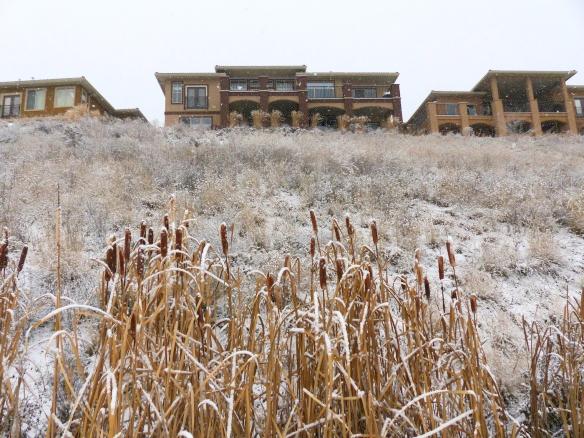 grasshouses