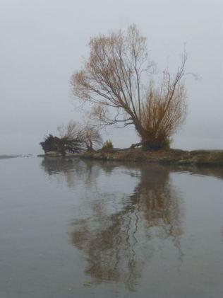 Vernon Creek Estuary