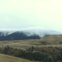 Fog Rivers Pour Out of Yellowstone