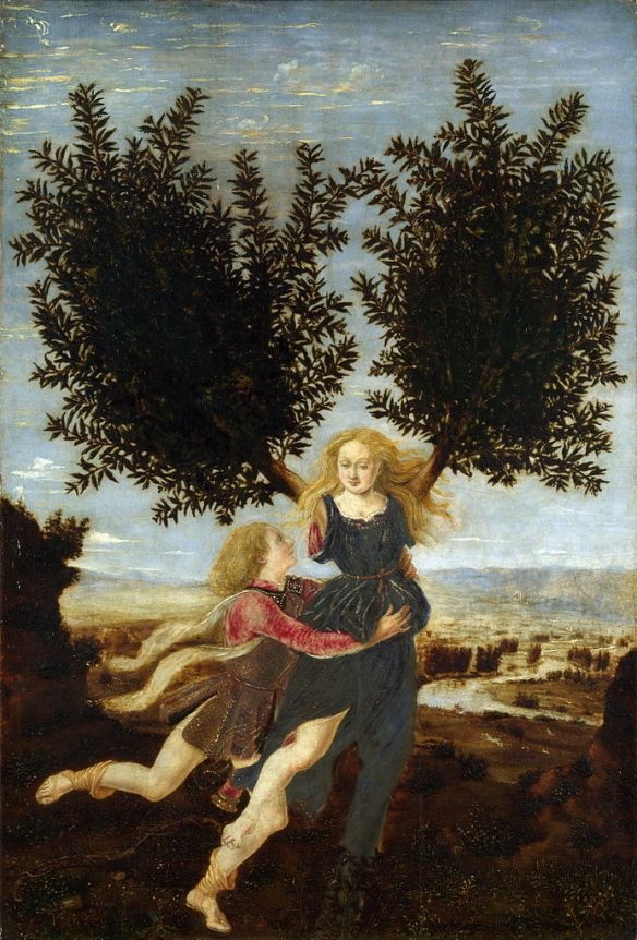 693px-Antonio_del_Pollaiolo_Apollo_and_Daphne