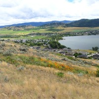 Sustaining the Okanagan 12: Beauty and the Bees