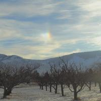 Sundog Over The Similkameen